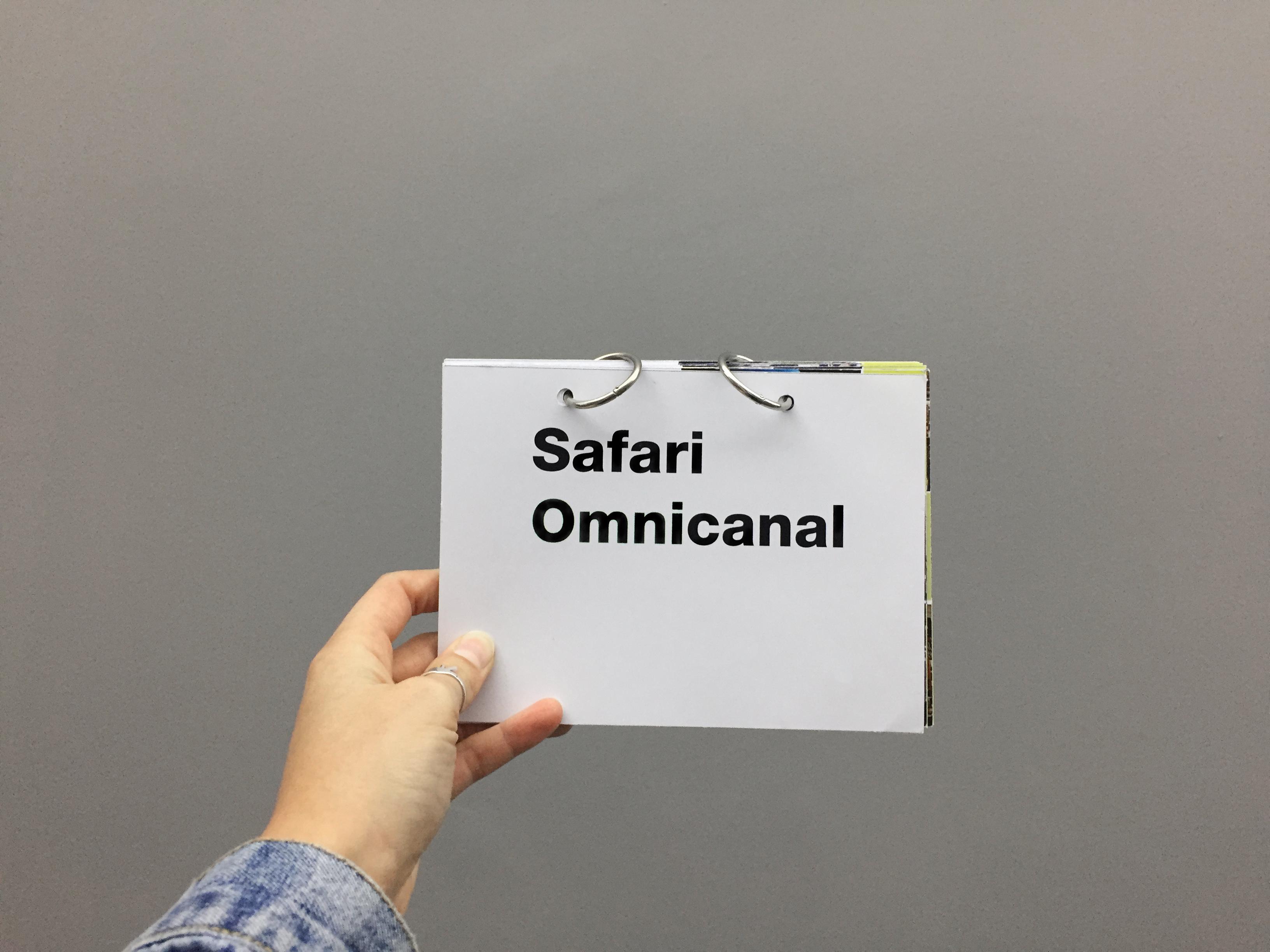 safari-omnicanal